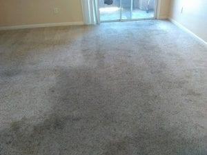 Carpet Cleaning Loomis CA before
